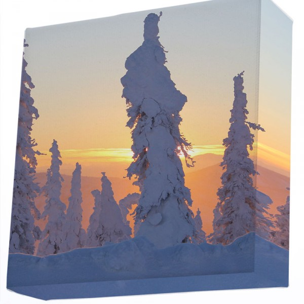 20x20 large format square photo print on stretched canvas
