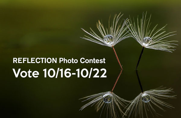 Vote for People's Choice Photo from 10/16-10/22/17.
