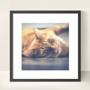 12x12 inch square photo print