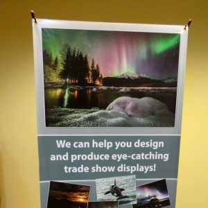 Order a custom printed banner with economy spring back banner stand